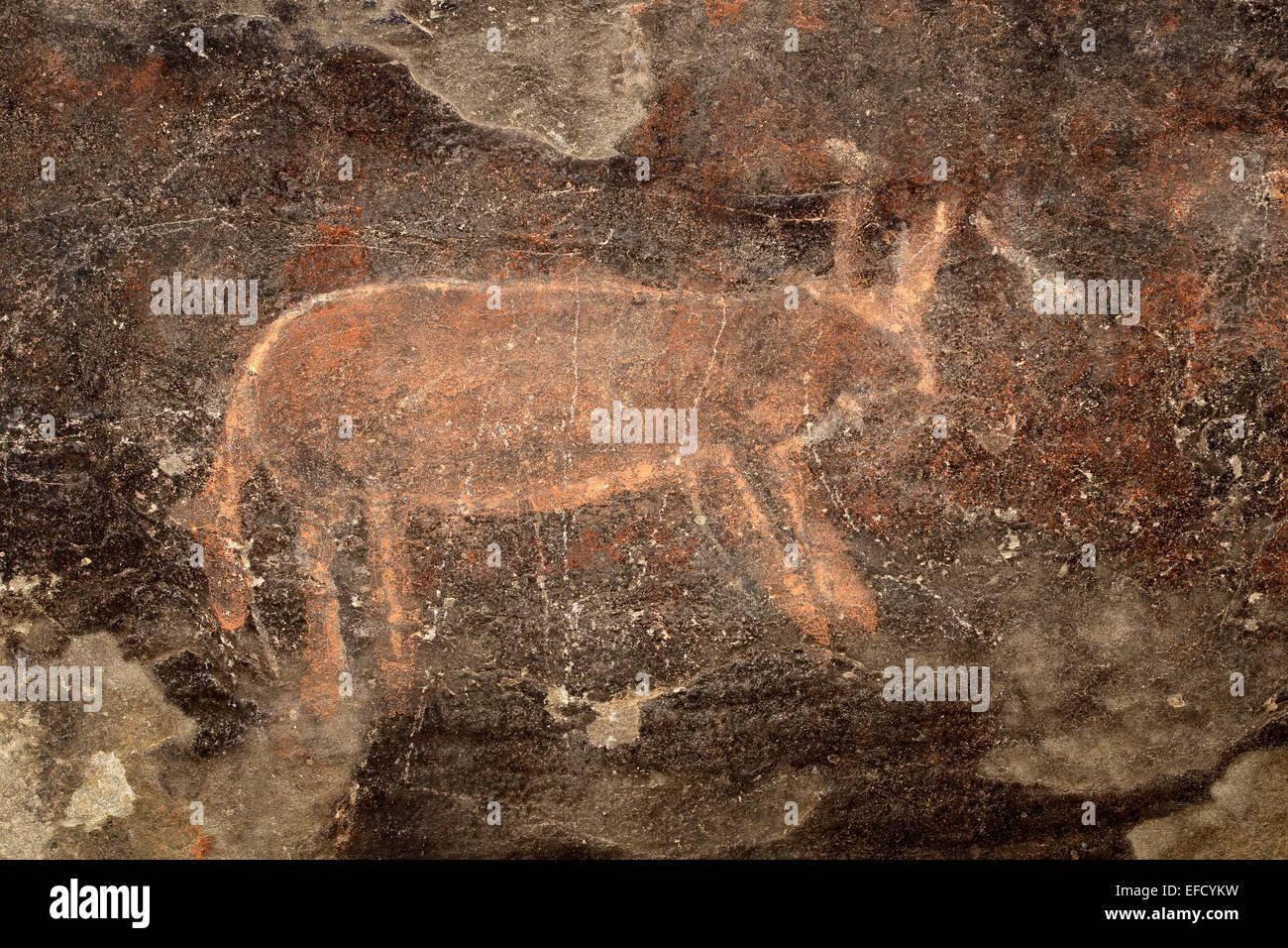 Bushmen (san) rock painting of an antelope, Karoo region, South Africa - Stock Image