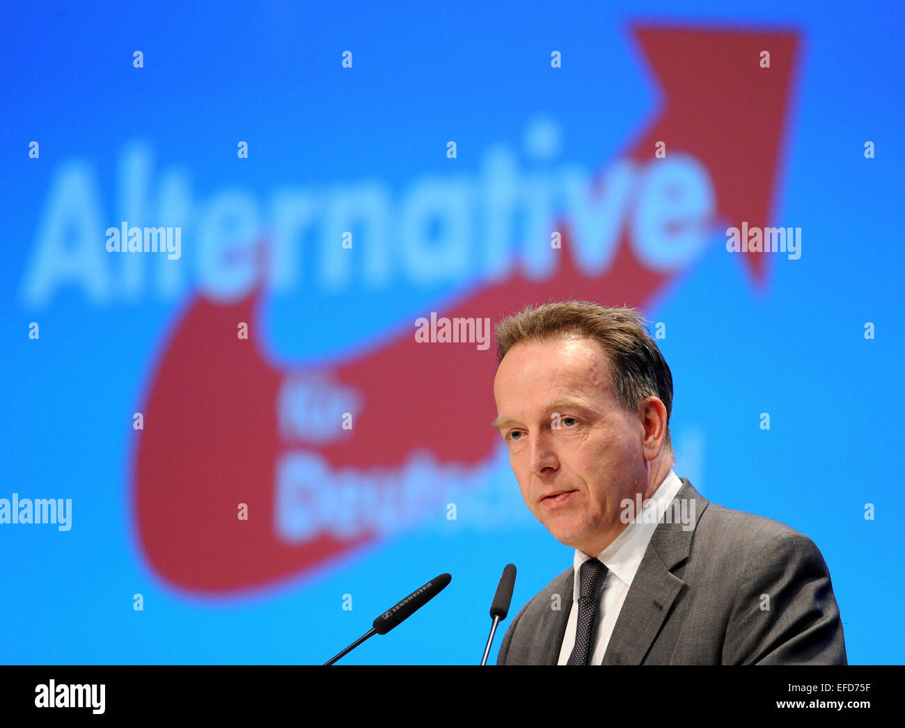 Bremen, Germany. 01st Feb, 2015. Prof. Stefan Homburg of the University of Hanover gives a guest lecture on the topic 'Reform of income taxation' at the 3rd party conference of the Alternative fuer Deutschland (AfD) party in Bremen, Germany, 01 February 2015. The three-day party conference ends in the afternoon. PHOTO: INGO WAGNER/dpa/Alamy Live News Stock Photo