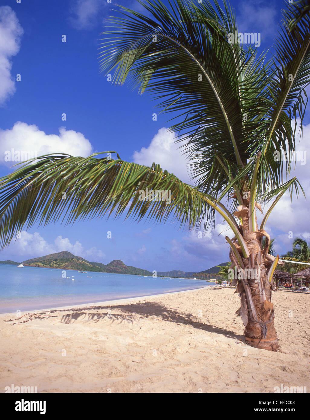 Jolly Beach Resort & Spa, Saint Mary's Parish, Antigua, Antigua and Barbuda, Lesser Antilles, Caribbean - Stock Image