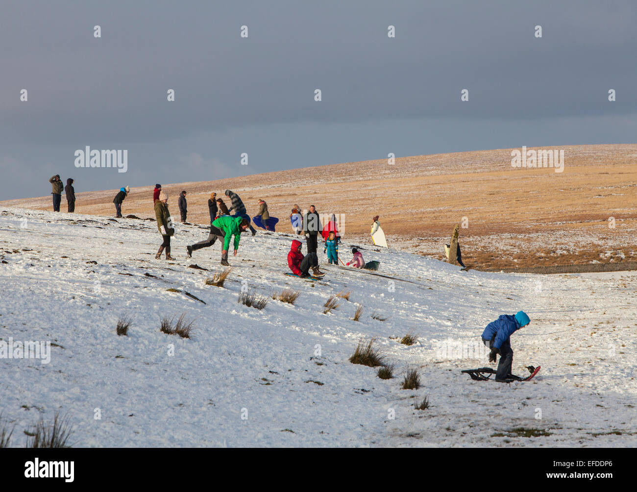 Dartmoor Snow, Devon, UK.1st February, 2015. Families enjoy a bitingly cold snowy day on Dartmoor while sledging - Stock Image