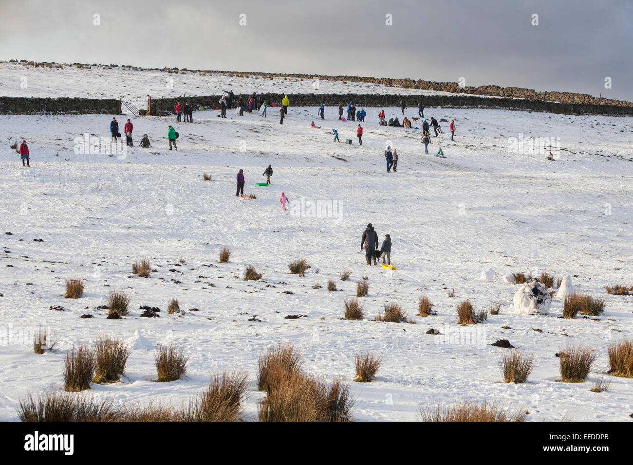 Dartmoor, Devon, UK. 1st February, 2015. Families enjoy a bitingly cold snowy day on Dartmoor while sledging with - Stock Image
