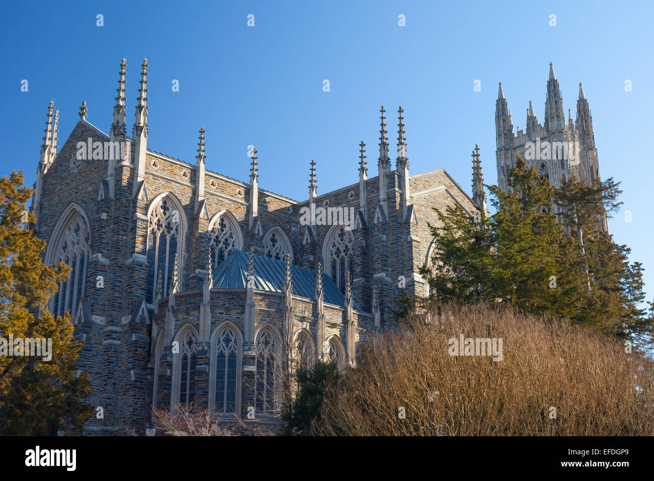 Back and side view of Duke Chapel, Durham, North Carolina - Stock Image