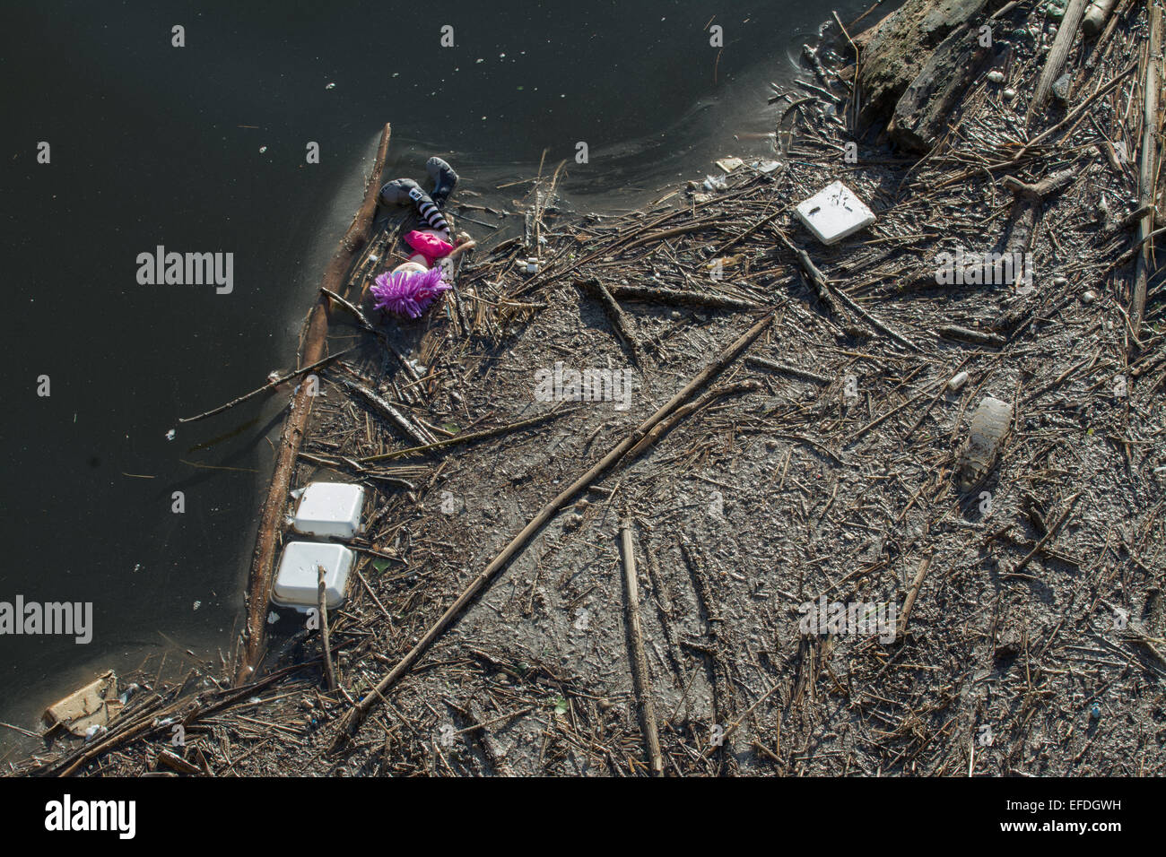 GLASGOW, SCOTLAND - 1 FEBRUARY 2015: Brightly coloured doll washed up on the banks of the River Clyde with other - Stock Image