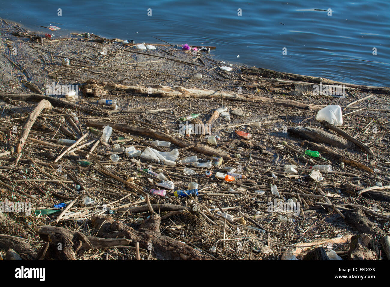 GLASGOW, SCOTLAND - 1 FEBRUARY 2015: Plastic debris and rubbish on the banks of the River Clyde, Glasgow in the - Stock Image