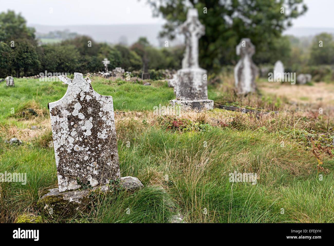 Broken overgrown gravestones in the ruined churchyard at Rathborney, Co. Clare, Ireland - Stock Image