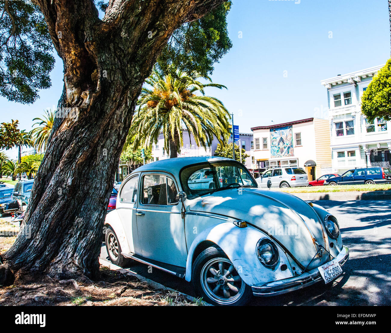 Old VW Beetle in the shade of a tree. - Stock Image