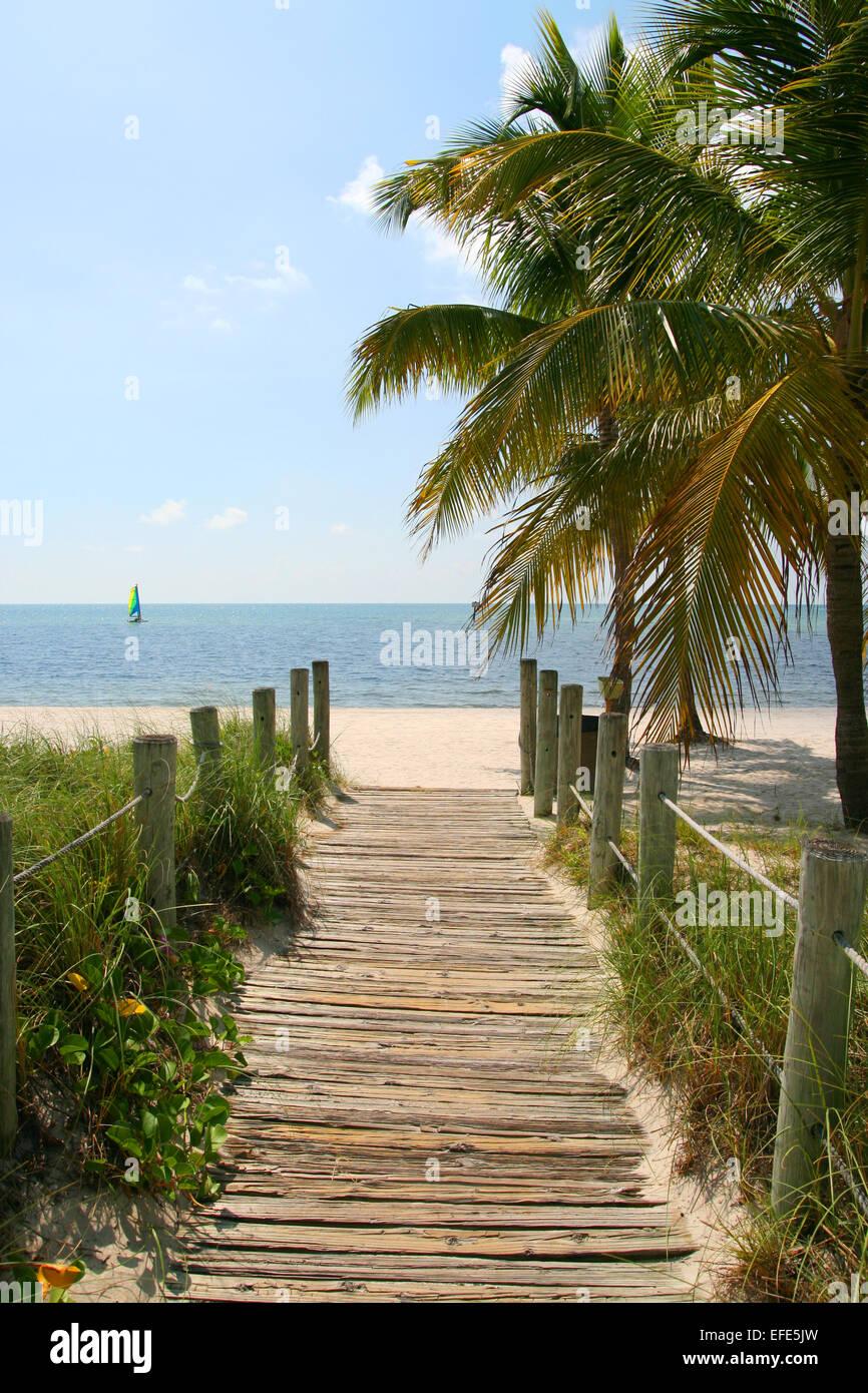 Steg zum Strand - Stock Image