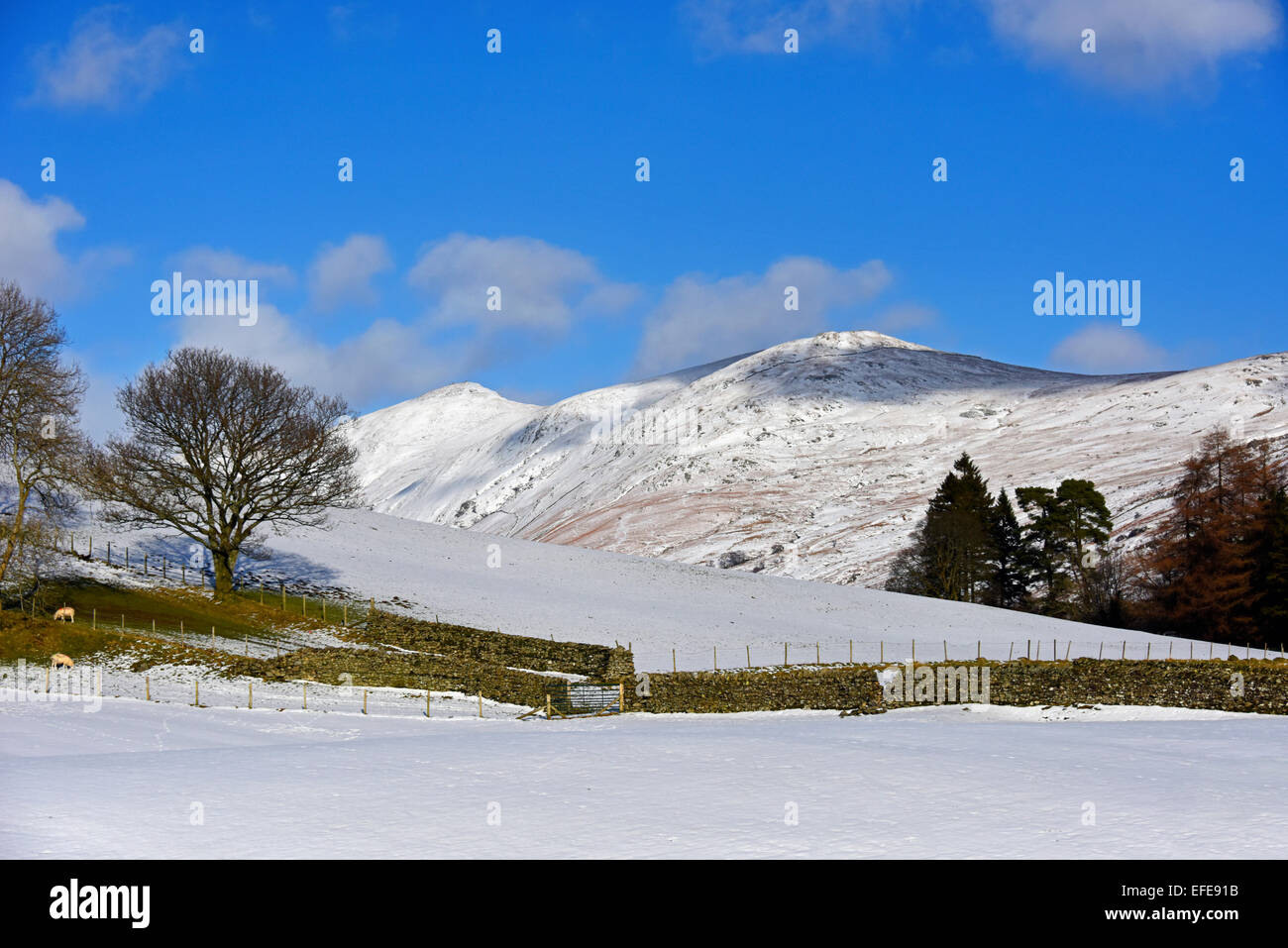 Ill Bell and Yoke. Troutbeck Valley, Lake District National Park, Cumbria, England, United Kingdom, Europe. - Stock Image