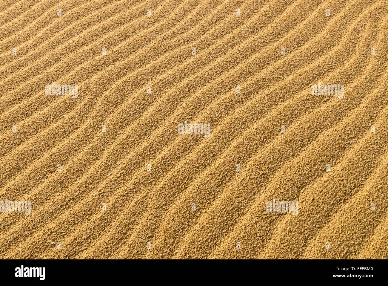 Full Frame Take Sand Background Stock Photos & Full Frame Take Sand ...