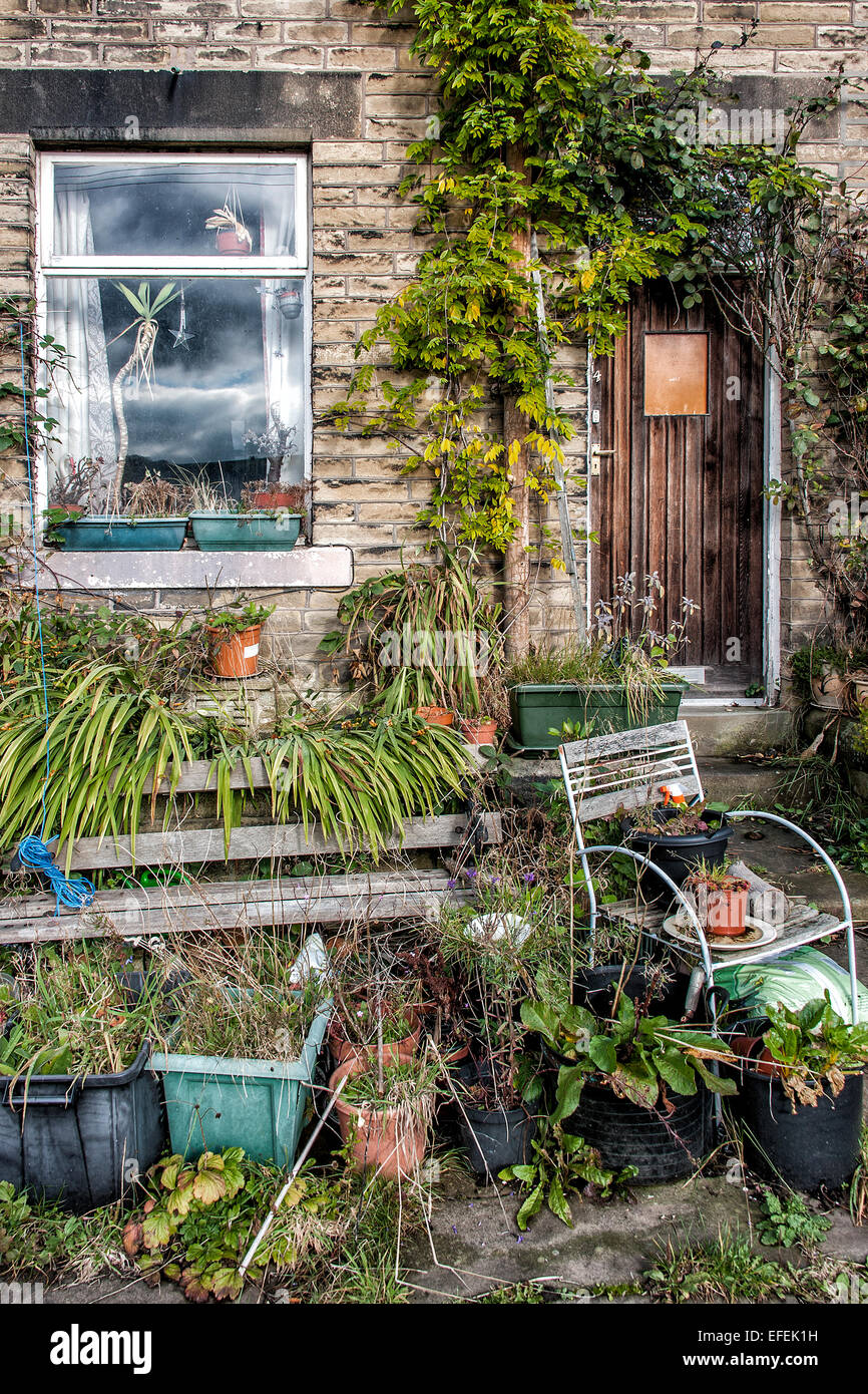 An untidy, overgrown house front. - Stock Image