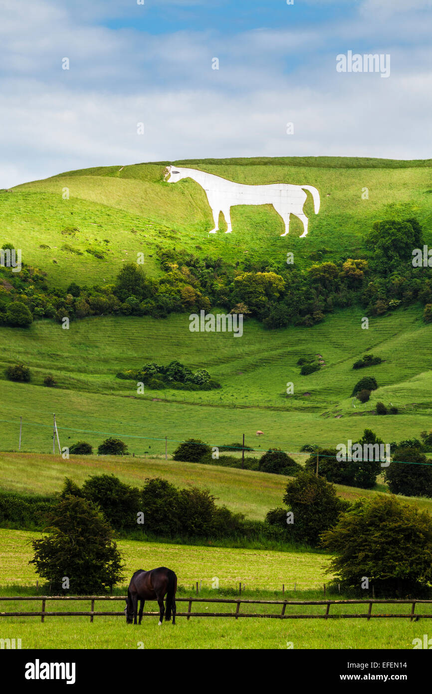 The White Horse below Bratton Camp, an Iron Age hillfort near Westbury in Wiltshire. - Stock Image