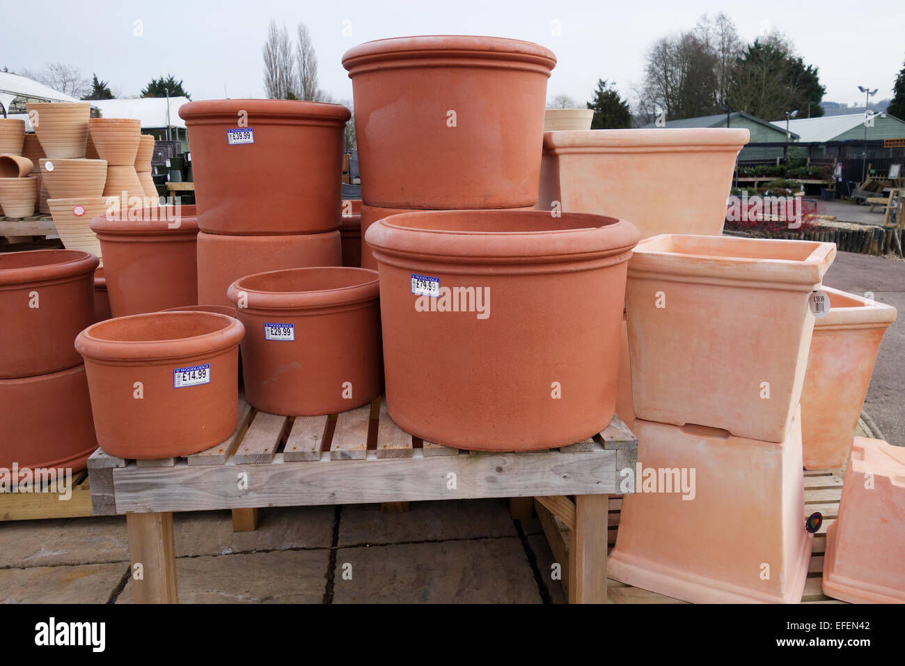 Merveilleux Terracotta Garden Pots For Sale At A UK Garden Centre   Stock Image