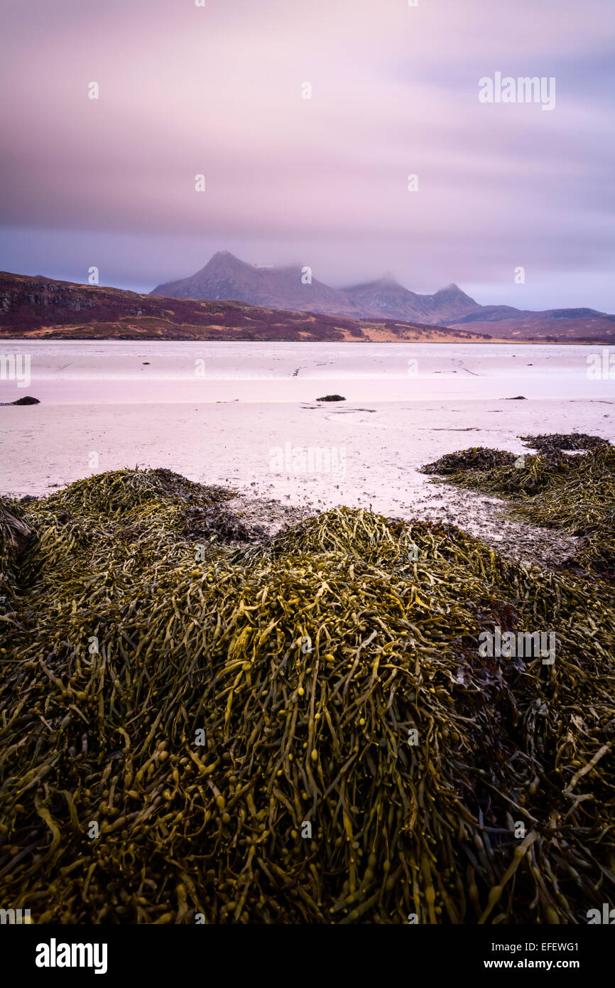 Dramatic clouds over Ben Loyal, seen across the mudflats of Kyle of Tongue, Sutherland, with a bed of kelp in the - Stock Image