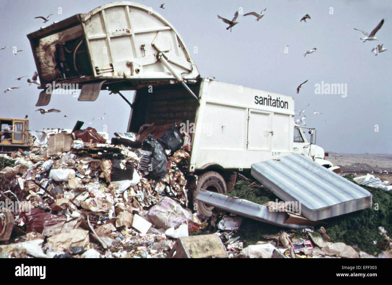 A garbage truck dumps trash in a landfill along the marshlands of Jamaica Bay May 1973 in New York City. - Stock Image