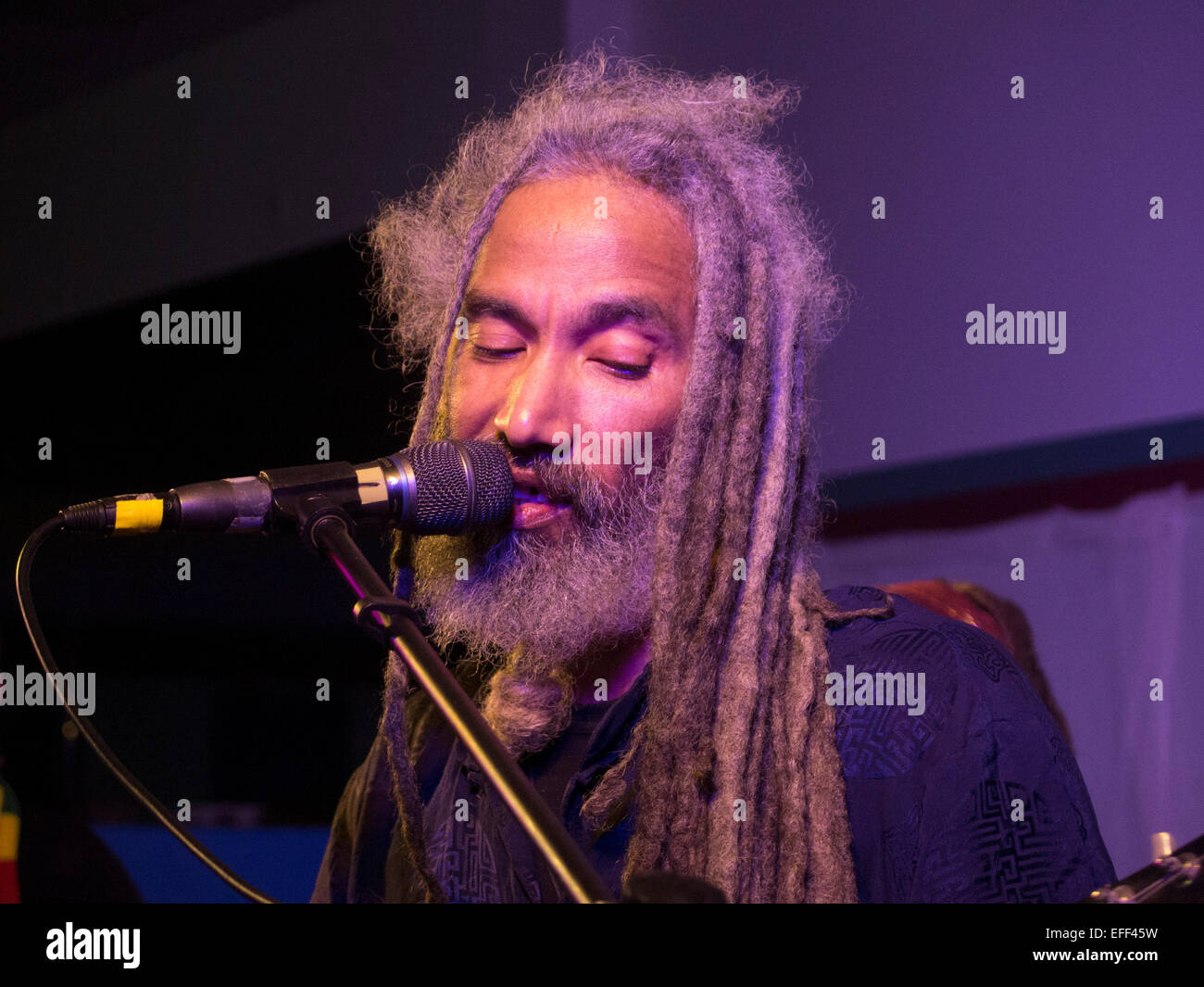African American reggae musician sings in his family band ReBelle, Northampton, MA, New Years Eve 2015 - Stock Image