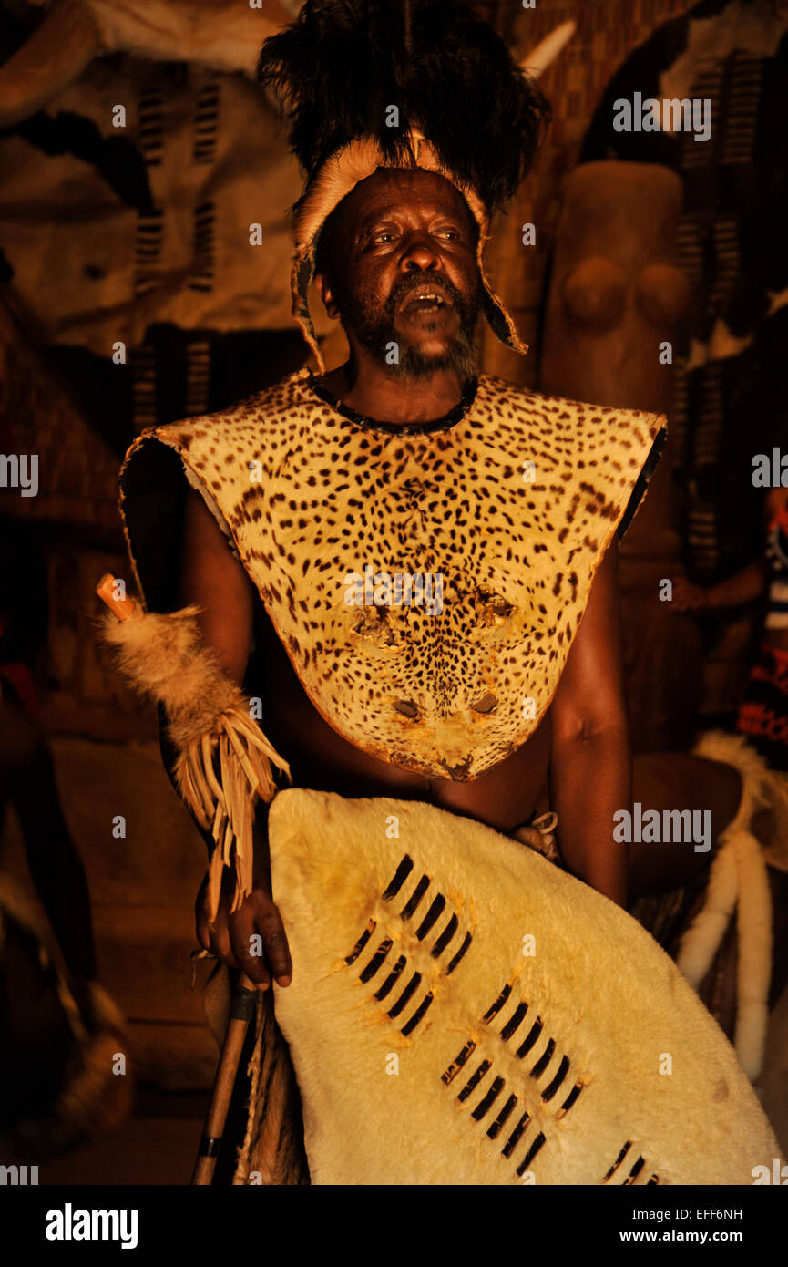 Zulu chief with headdress and leopard skin ceremonial dress holding white shield at culture village Shakaland, KwaZulu - Stock Image