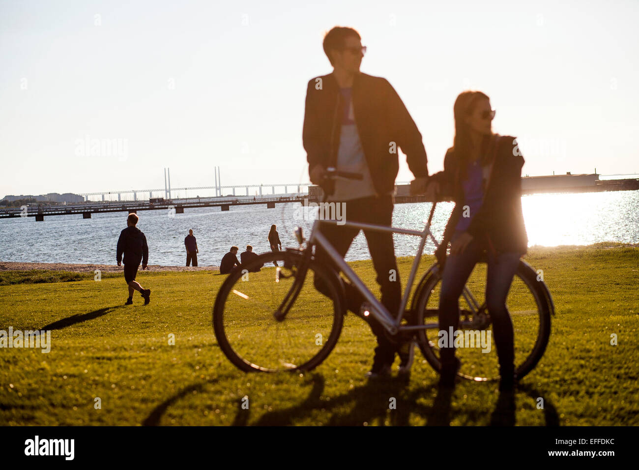 Couple with bicycle on grassy landscape by sea against clear sky - Stock Image