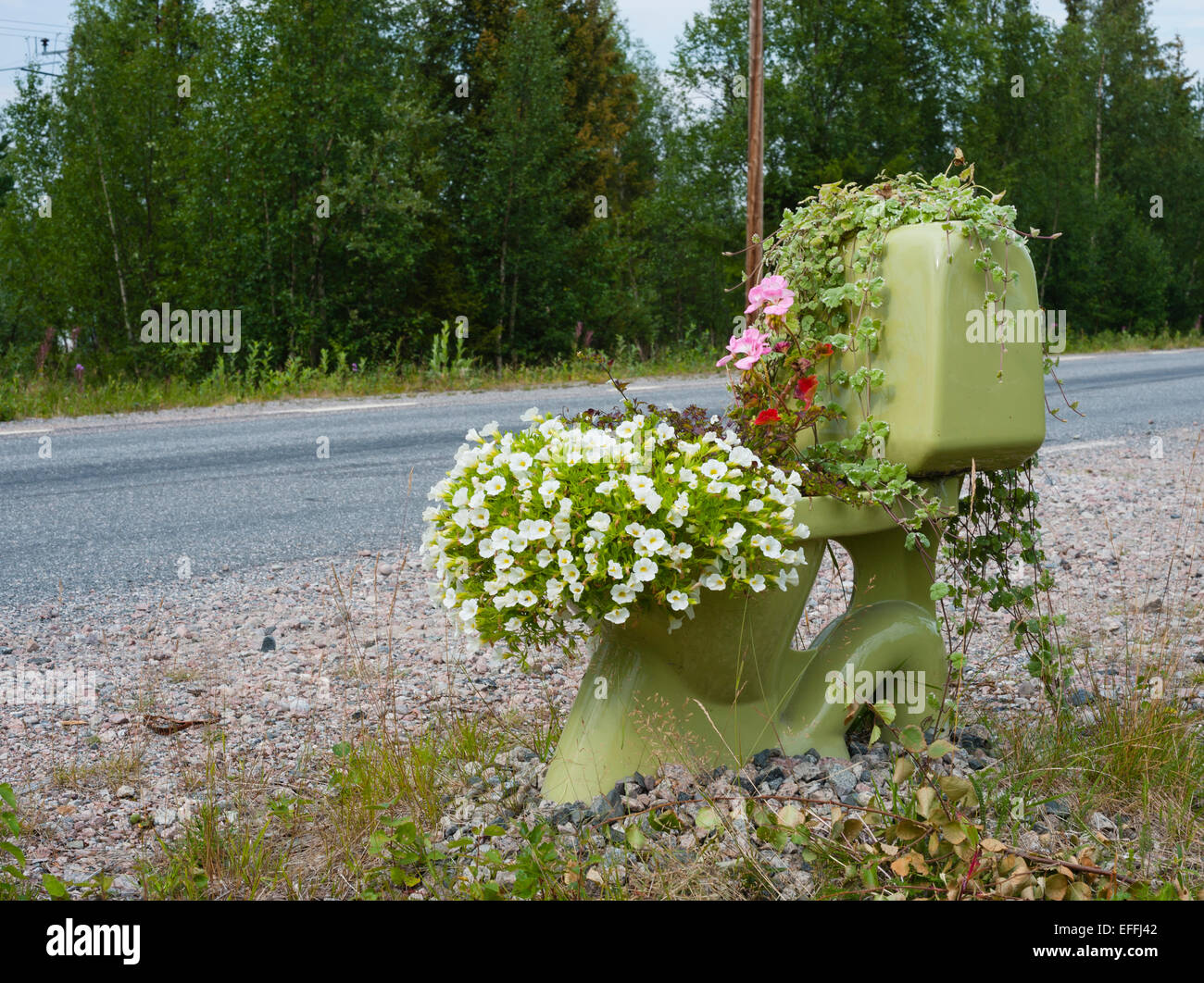 Sweden, Lapland, Norrbotten County, toilet with flowers at roadside - Stock Image
