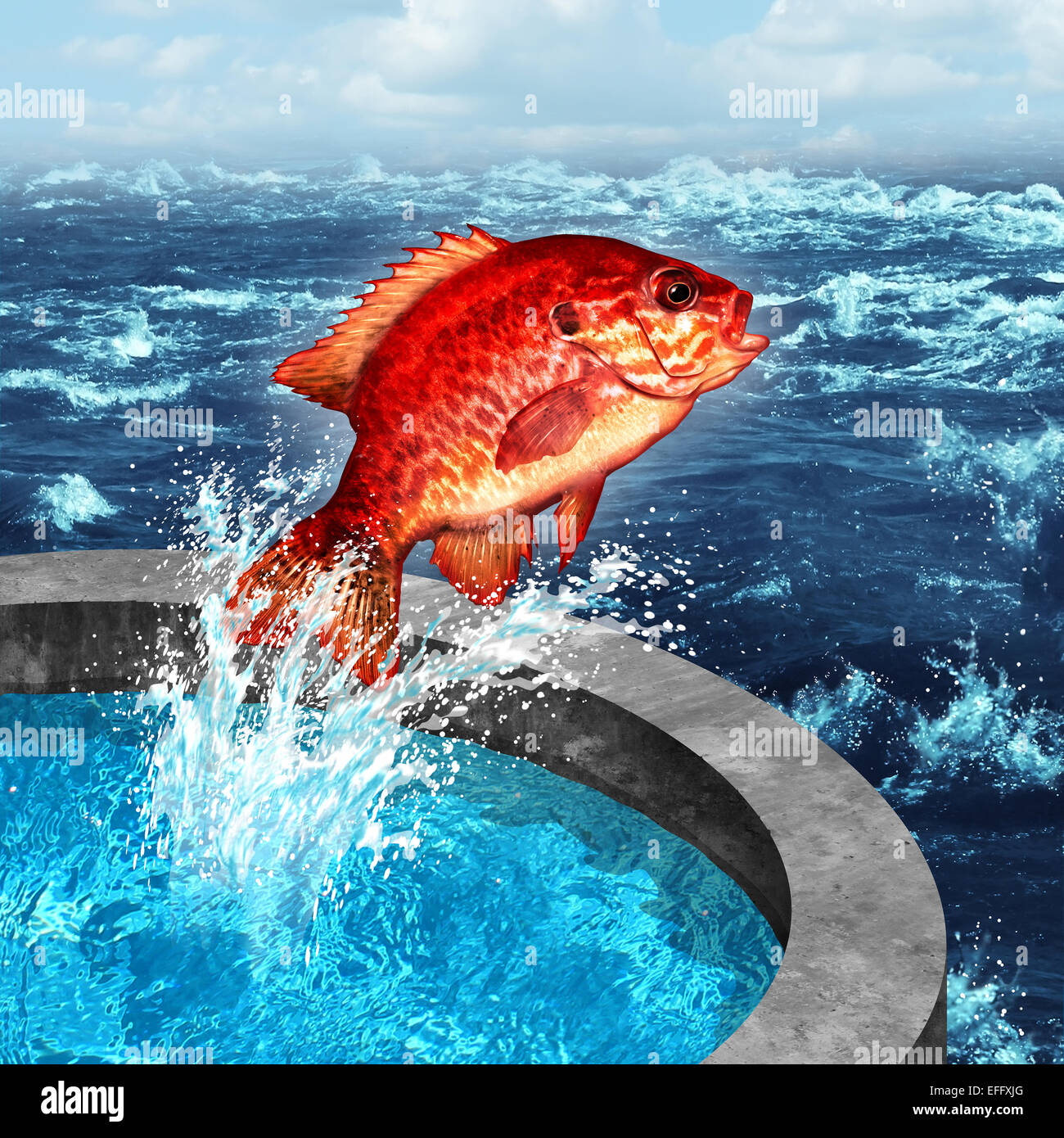 Courage concept and ambition symbol as a red fish jumping out of an artificial pool to join the natural blue ocean - Stock Image