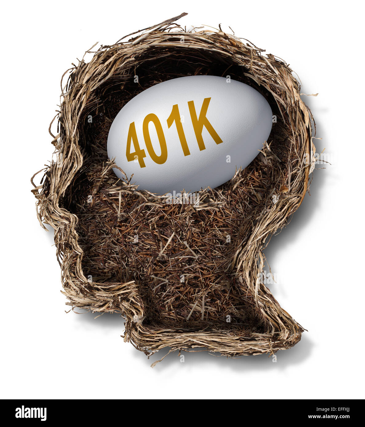401k plan financial concept as a nest egg pension fund investment in a bird nest shaped as a human head as a wealth - Stock Image