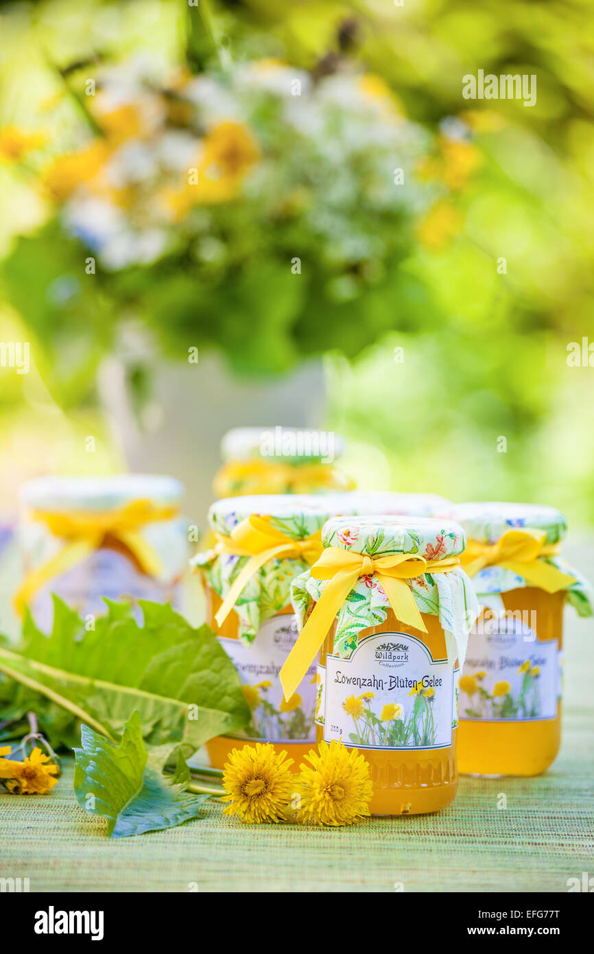 Glasses with dandelion flower jelly in the garden - Stock Image