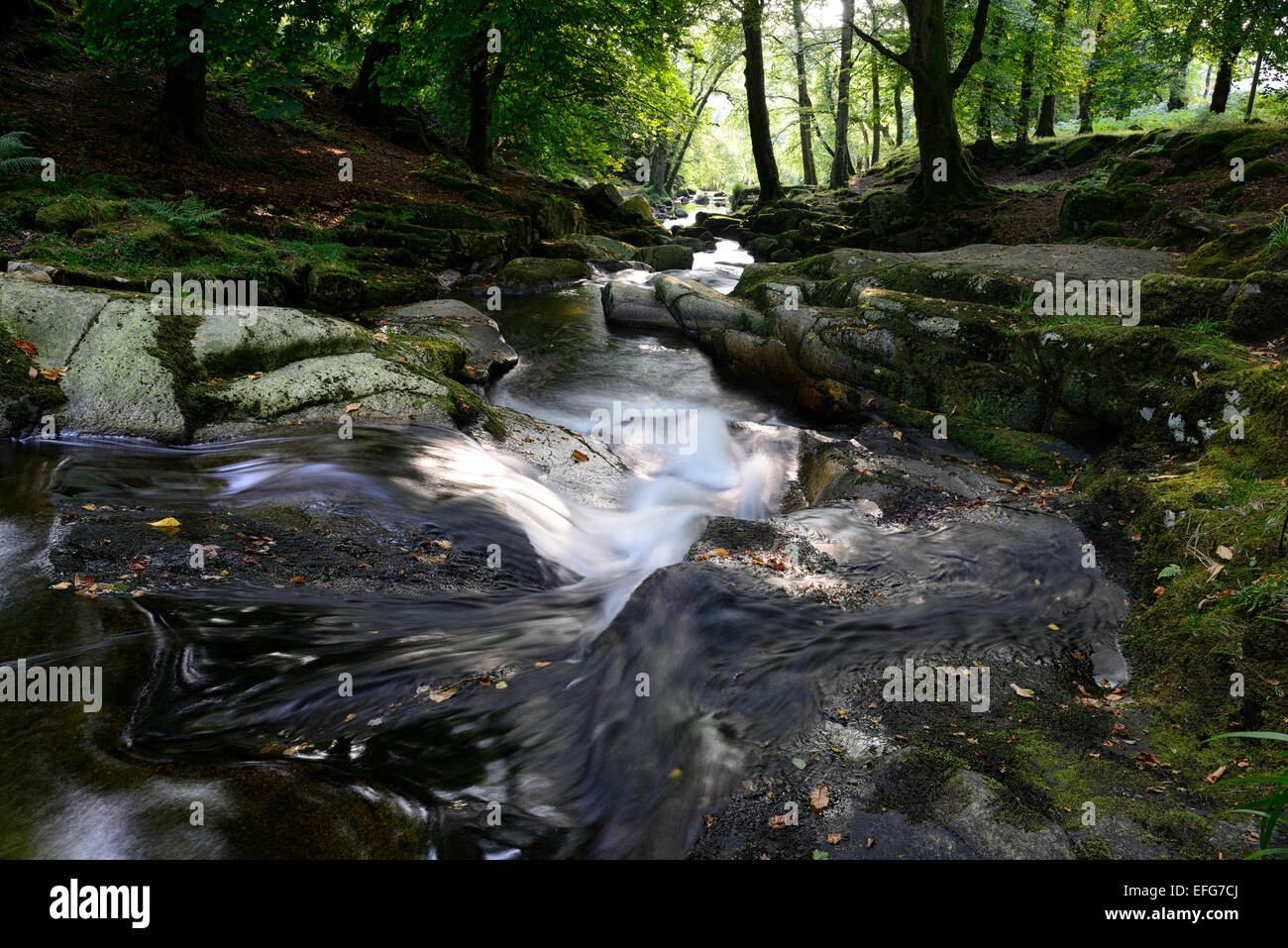 Cloghleagh River waterfall summer rural scene scenic irish sidelit sidelighting County Wicklow RM Ireland - Stock Image
