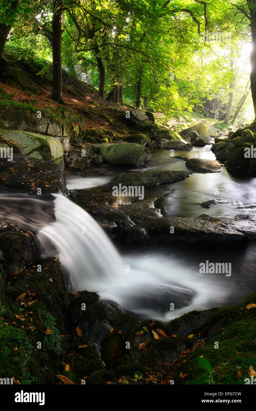 Cloghleagh River waterfall summer rural scene scenic irish sidelit sidelighting County Wicklow RM Ireland Stock Photo
