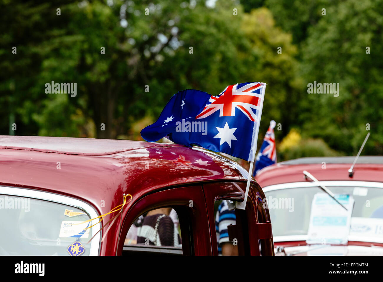Classic cars on display, RACV Australia Day picnic and Federation Vehicle Display, Kings Domain, Melbourne, Victoria, Stock Photo