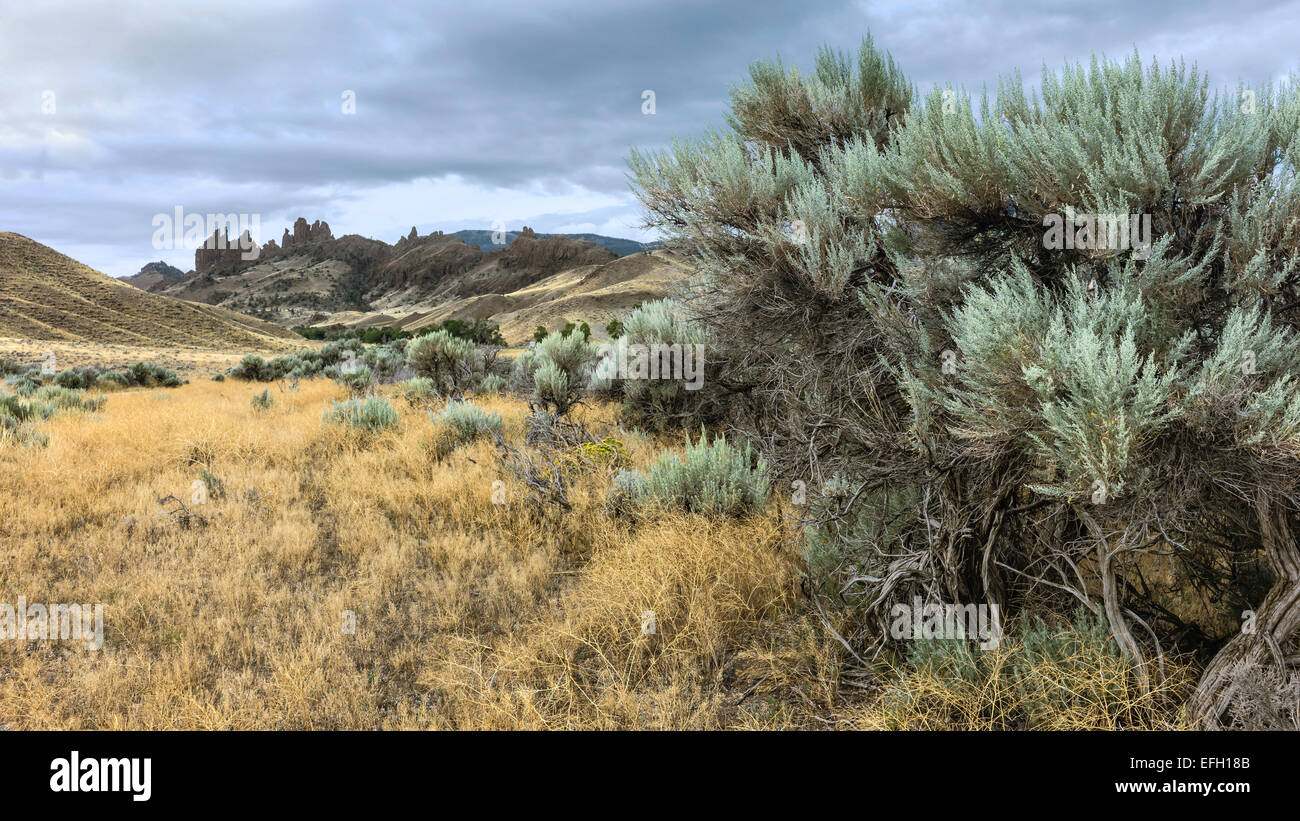 Buffalo Bill State park showing the rugged landscape and dry bush land in the height of summer. - Stock Image