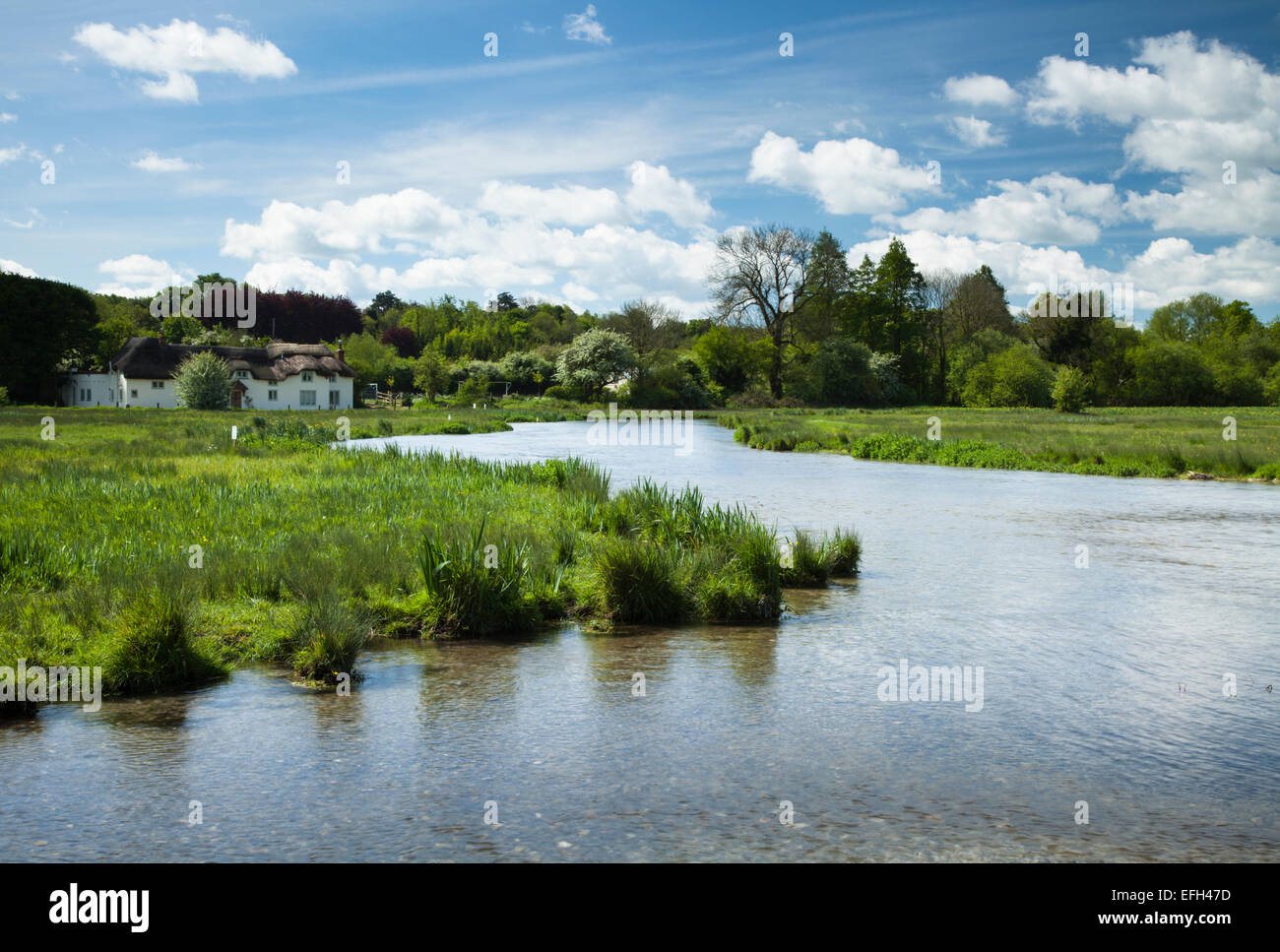 The River Test meandering through the watermeadows of Chilbolton Cow Common, Chilbolton in the Test Valley, Hampshire, - Stock Image