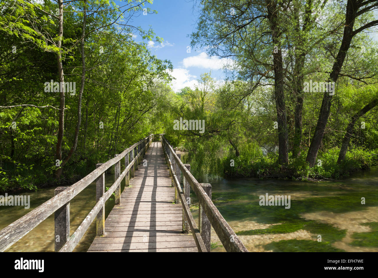 Wooden walkway crosses a wide section of the River Test from Wherwell to Chilbolton Cow Common, Test Valley, Hampshire, - Stock Image