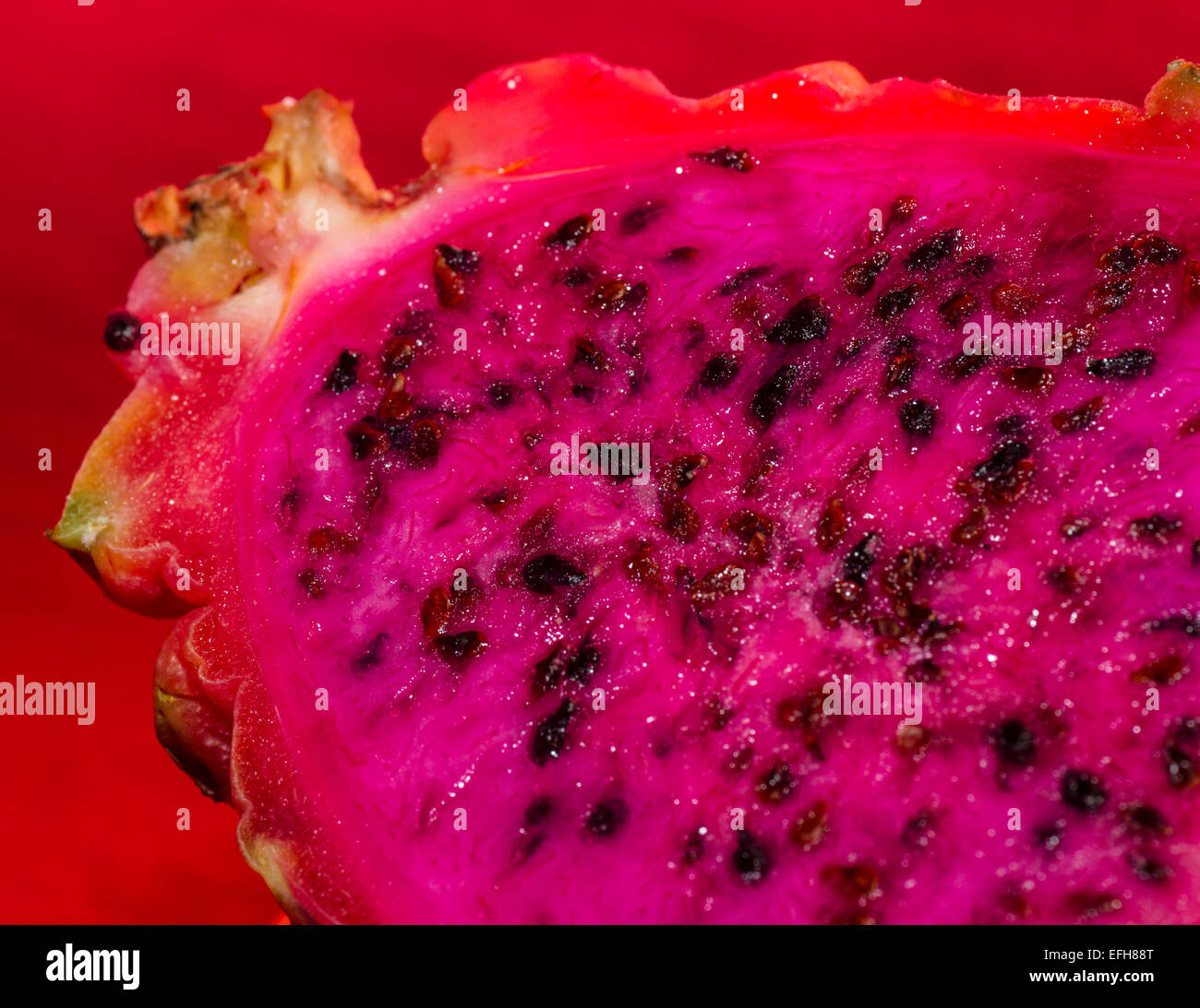 vibrant pitaya dragonfruit with bright pink flesh and red skin - Stock Image