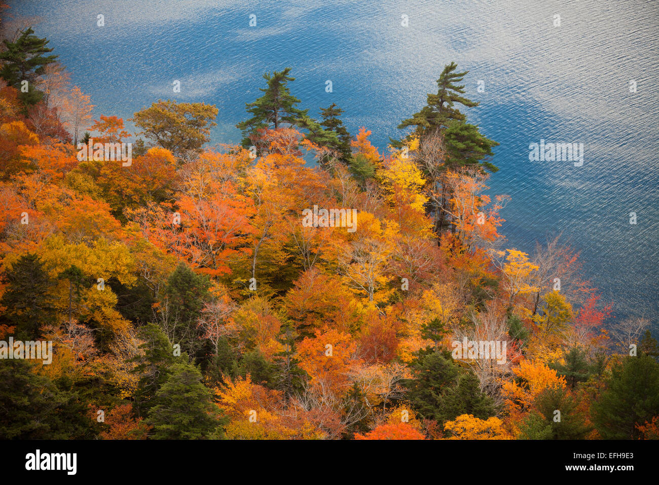 Views of autumn foliage and Jordan Pond, from South Bubble Mountain, Acadia National Park, Maine, USA Stock Photo
