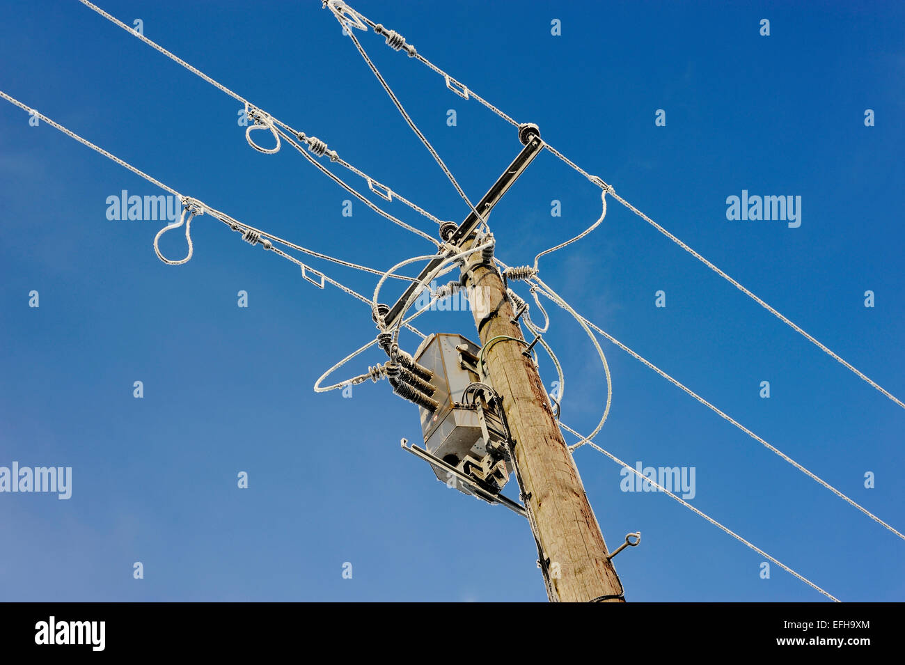 Powerlines covered with snow & frost against a blue sky during winter. - Stock Image