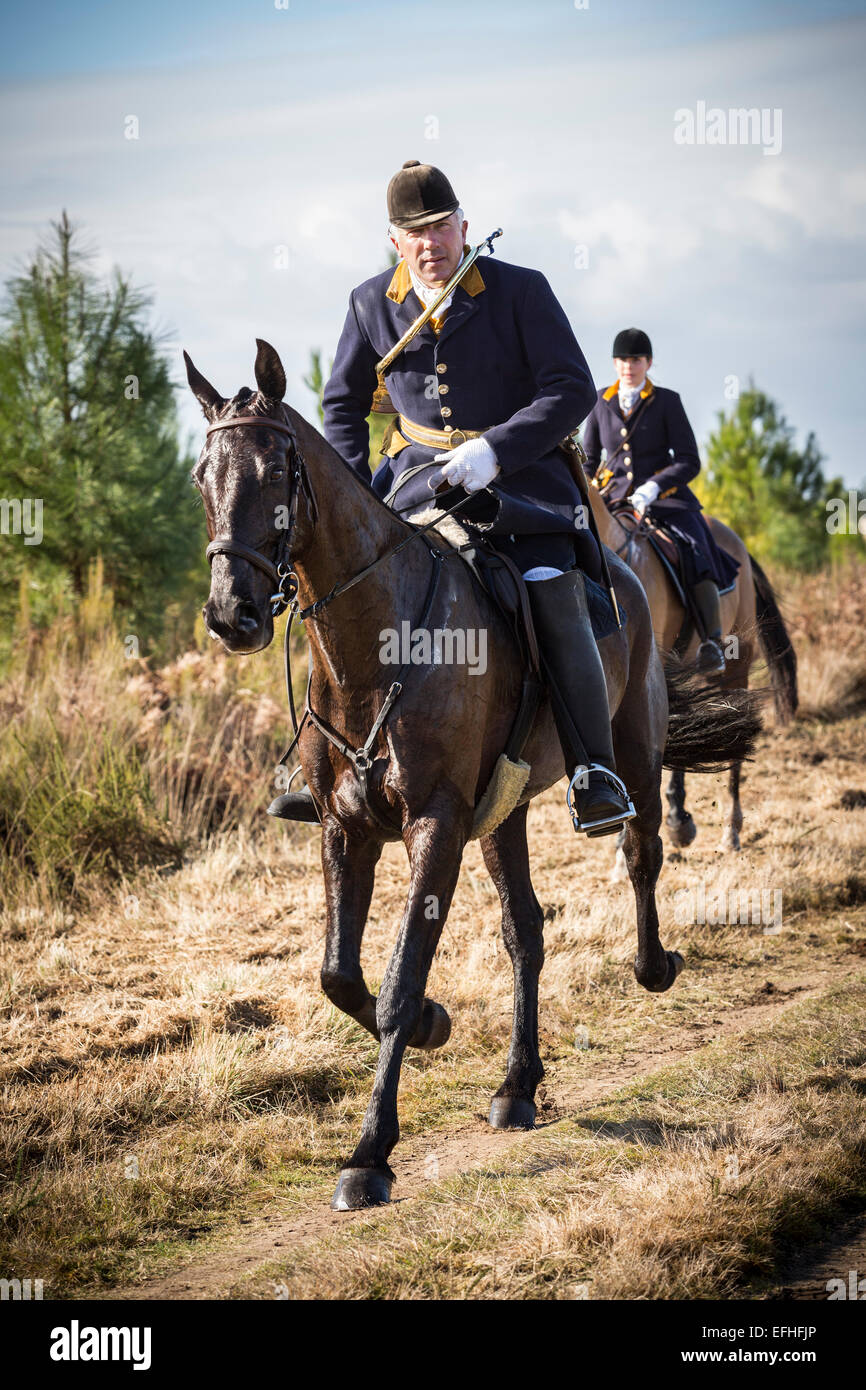 The field master and a lady rider taking part in a deer hunting with hounds in the Landes region (France). - Stock Image