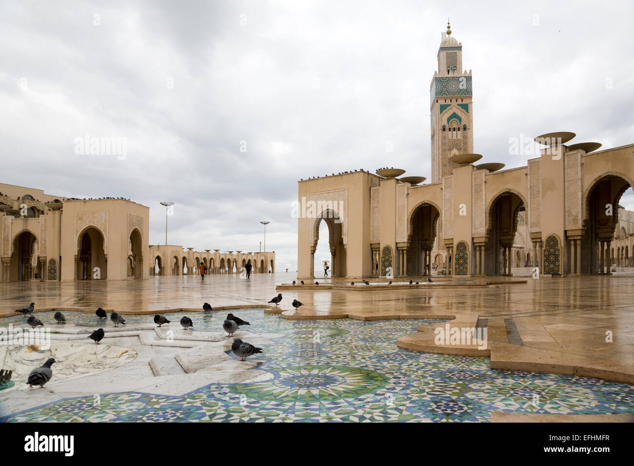 Pigeons in front of the Hassan II mosque, Casablanca, Morocco - Stock Image