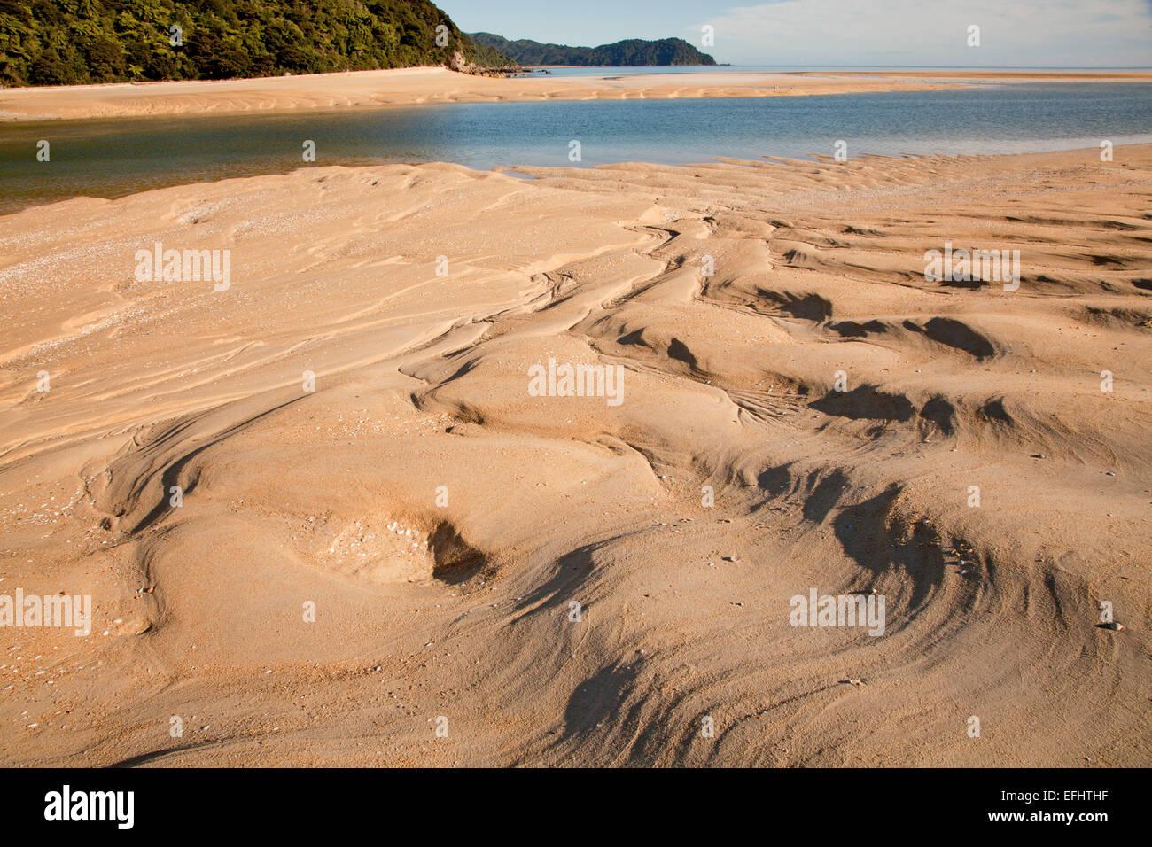 Sandbank, with ripples in golden sand, Awaroa Inlet, Abel Tasman Coastal Track, Great Walks, north-west of South - Stock Image