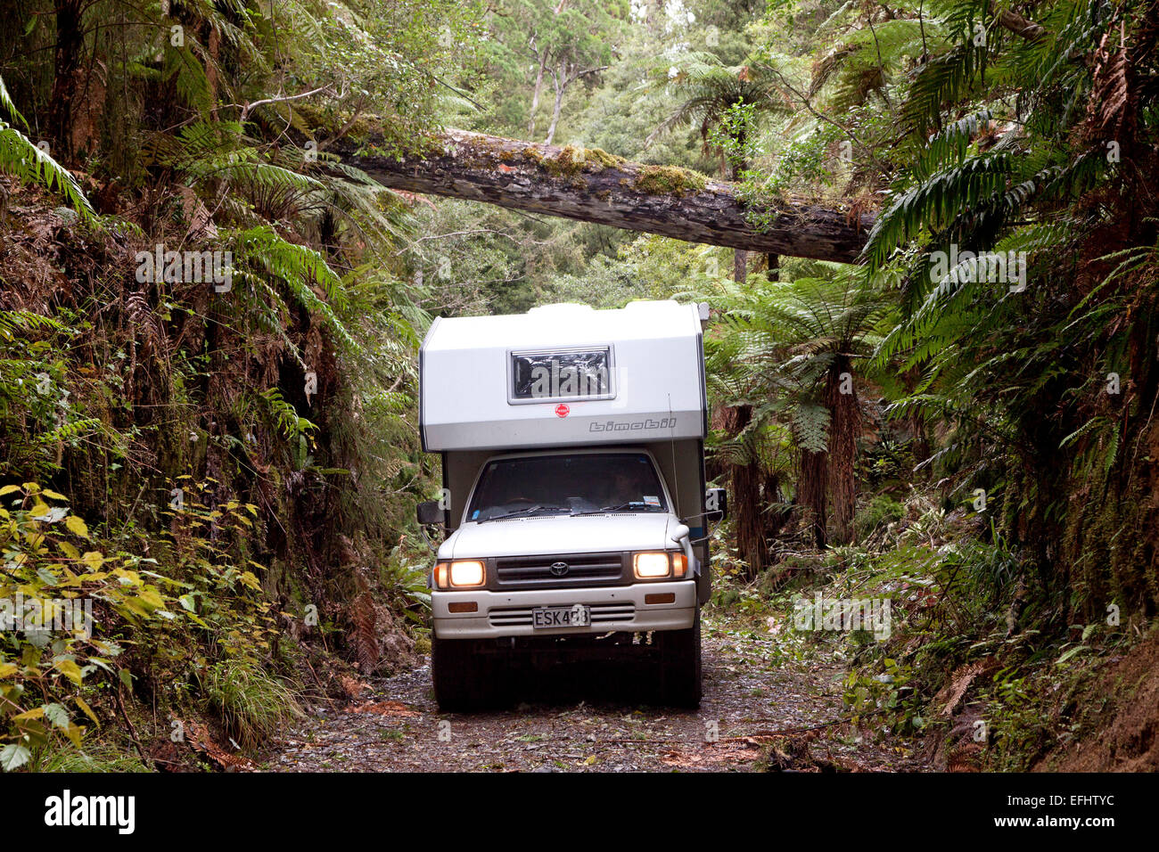 4WD camper on a forest track in Whirinaki Forest, North Island, New Zealand - Stock Image