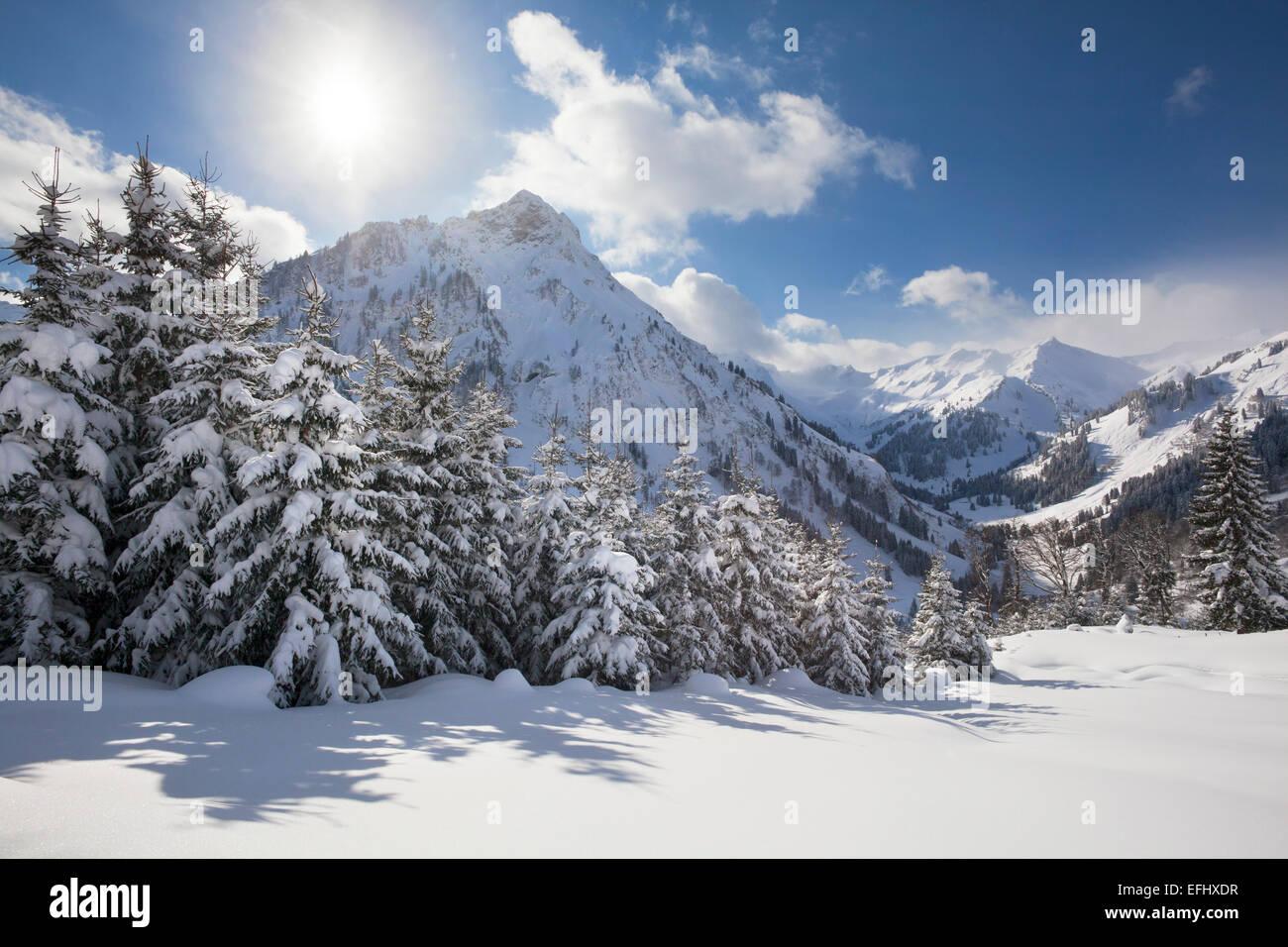 Winter landscape at Hintersteiner Tal, near Bad Hindelang, view to Giebel, Allgaeu, Bavaria, Germany - Stock Image
