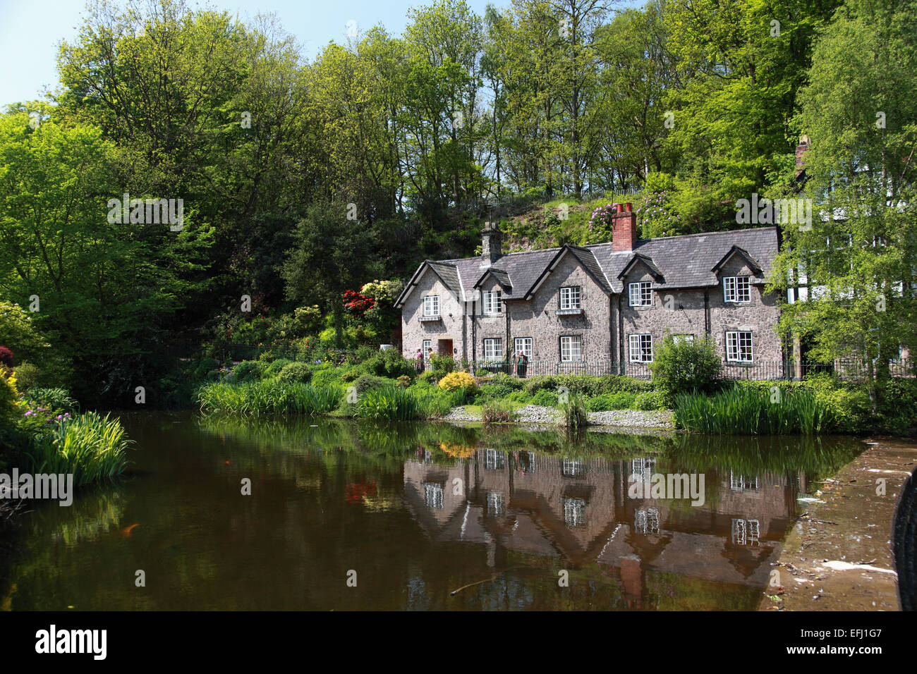 Looking across Lower Dam to the Dingle in Lymm, Cheshire - Stock Image