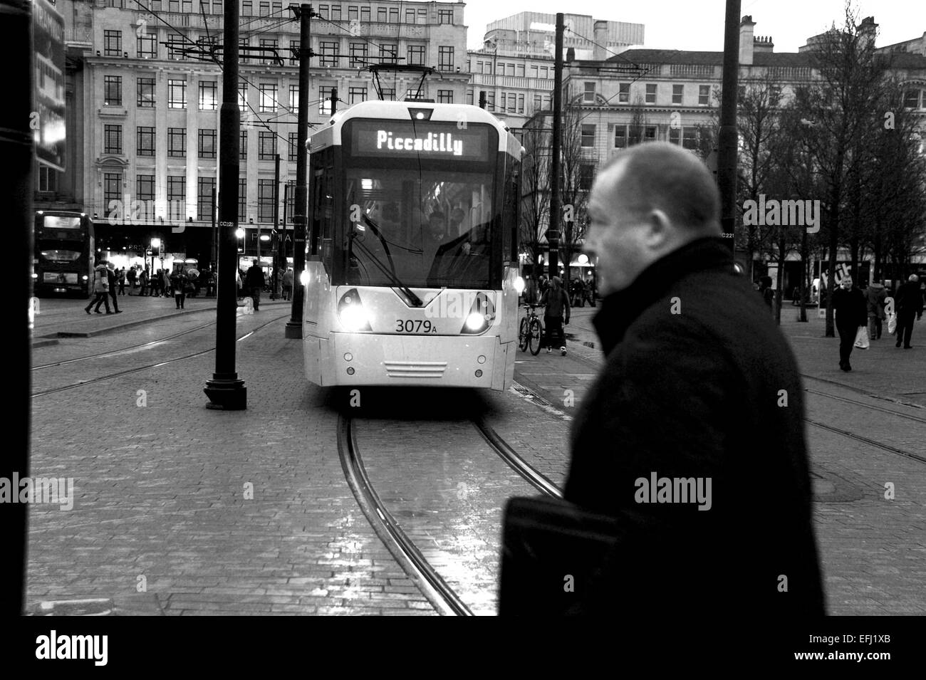 Manchester Lancashire UK - Man crosses the street in front of a city centre tram in Piccadilly Gardens January 2015 - Stock Image