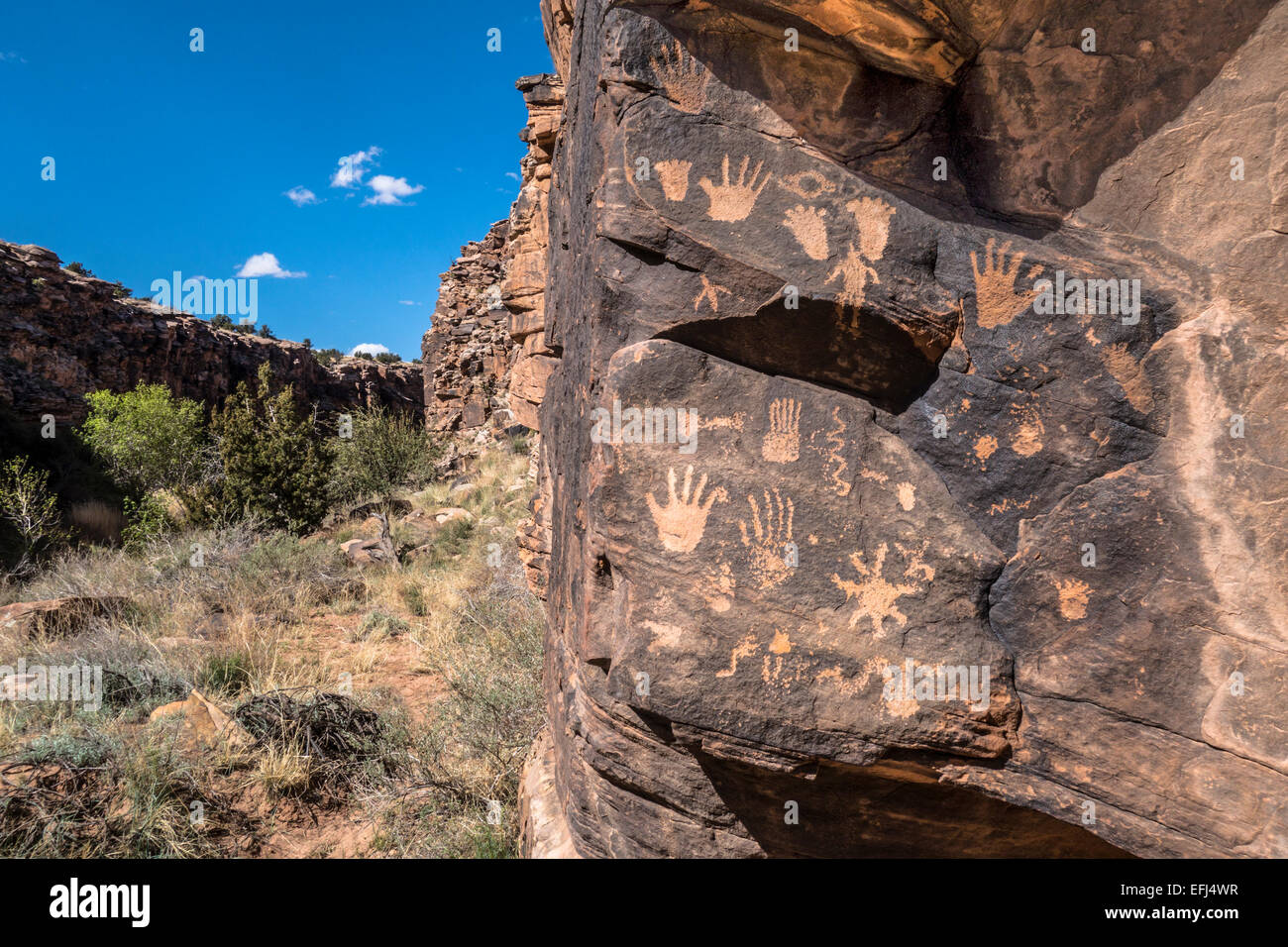Ancient Puebloan or Anasazi petroglyphs in the upper Little Colorado River basin, Arizona, USA - Stock Image
