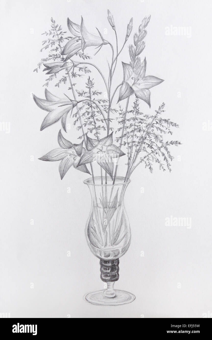 pencil drawing flowers stock photos pencil drawing flowers stock