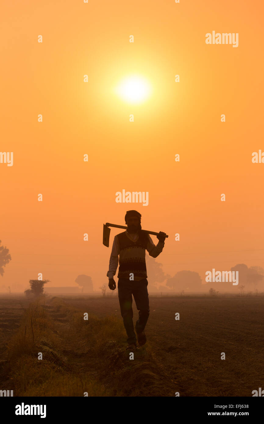 India, Uttar Pradesh, Agra, man walking to work holding hoe at sunrise - Stock Image