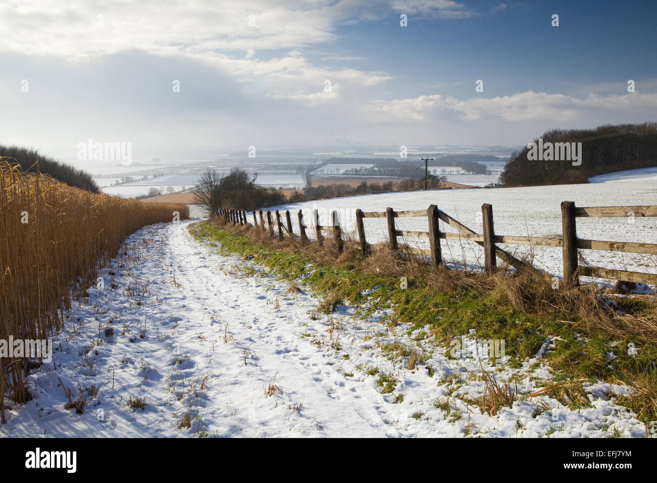 The Ancholme Valley, North Lincolnshire, UK. 3rd February 2015. - Stock Image