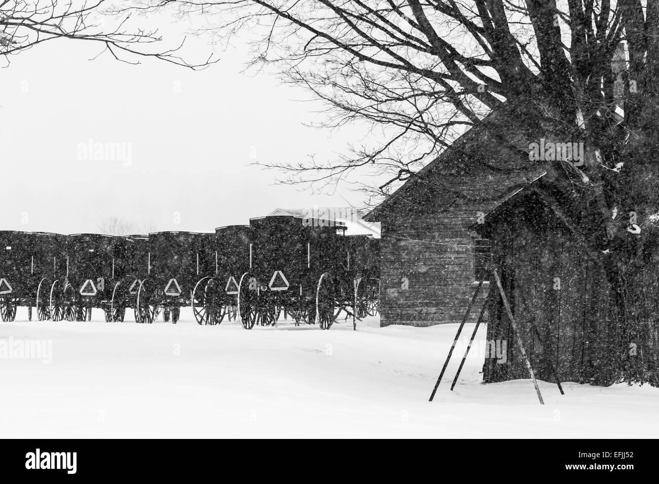Amish Black And White Stock Photos Amp Images Alamy