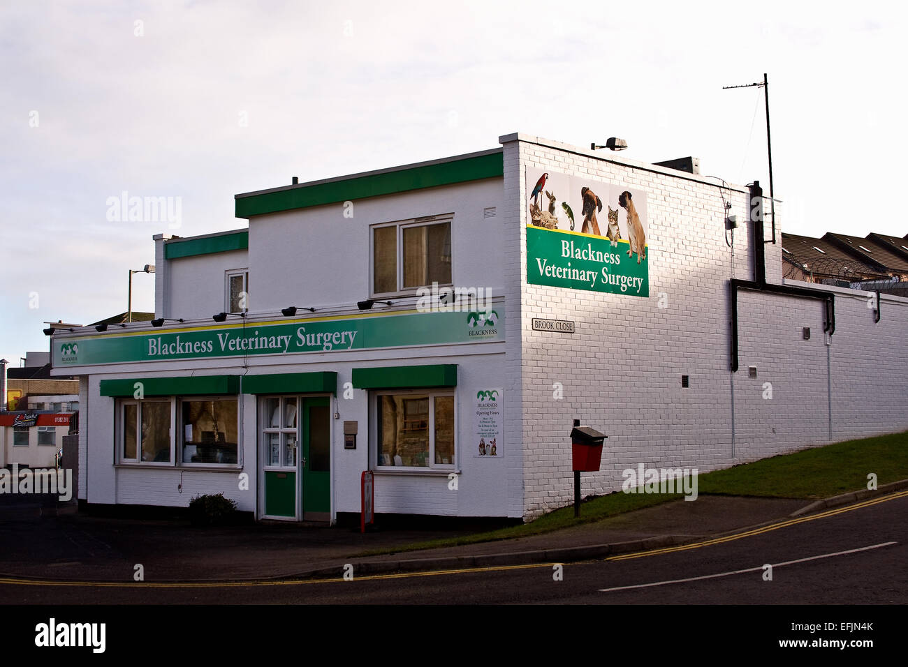 The Blackness Veterinary Surgery is situated along Brook Street in Dundee, UK - Stock Image