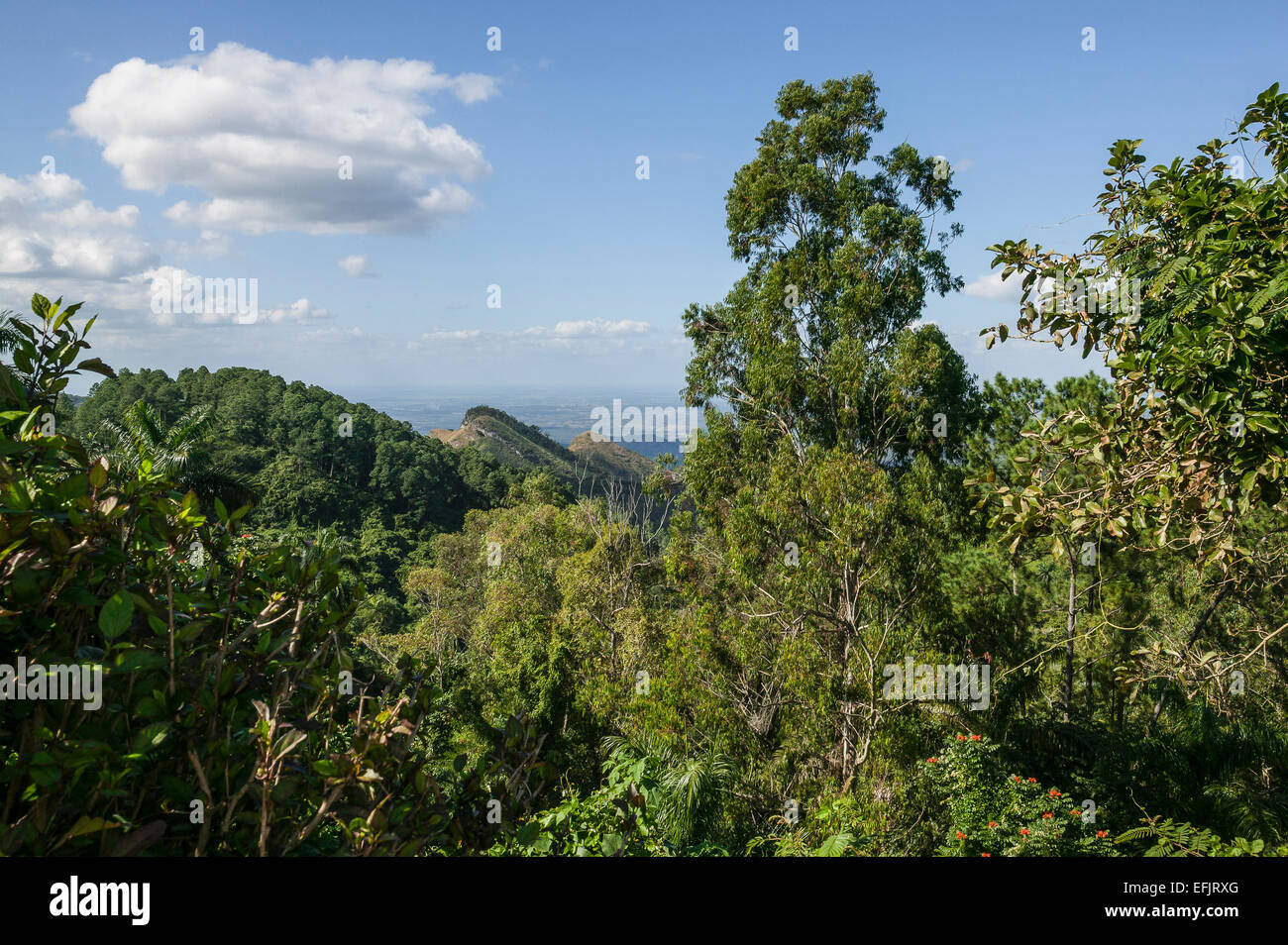 View from Sierra del Escambray mountains, Cienfuegos Province, Cuba. - Stock Image