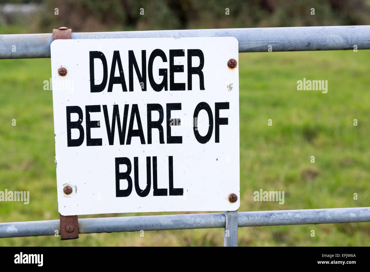 Danger beware of the bull sign on farm gate, Burren, County Clare, Ireland - Stock Image