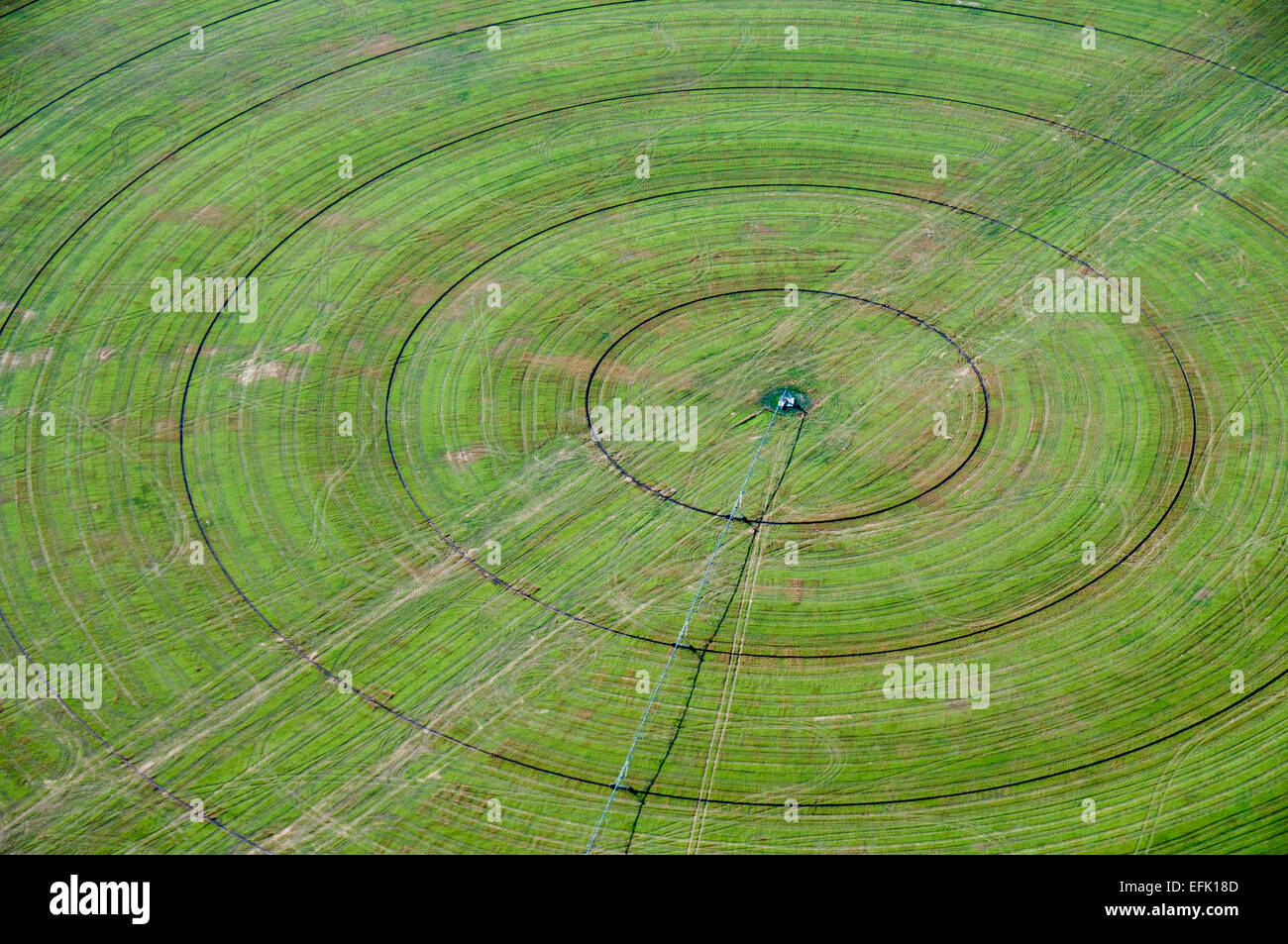 Center pivot irrigated field in south-central Idaho - Stock Image